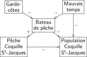 Exemple de graphe cognitif défini sur l'ensemble de valeurs {+,-}.
